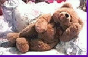 Vintage Teddy Bears - Nana's Teddies
