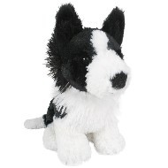 BORDER COLLIE - LITTLE MATEY