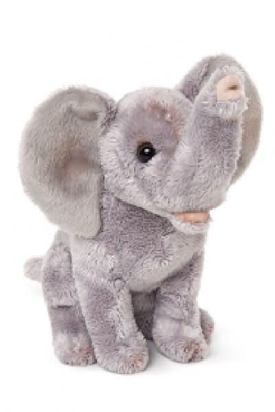 ELEPHANT - ELLIE JNR