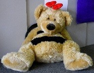 BREEZY BEE BEAR