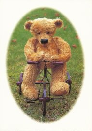BLOOMSDALE CARDS - BEAR ON BIKE
