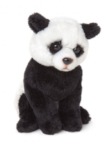 PANDA - PATCHES JNR