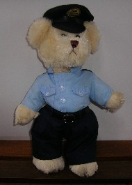 AIRFORCE TEDDY
