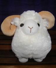 SHEEP - MACARTHUR RAM