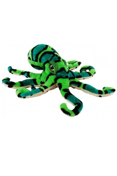 OCTOPUS - GREEN