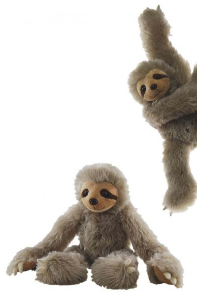 SLOTH - TWO TOED