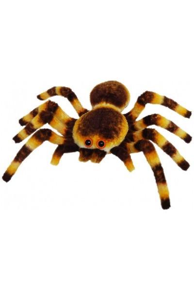 SPIDER - BROWN