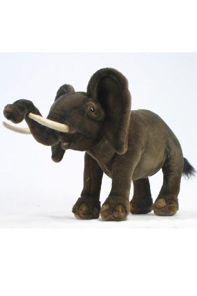 ELEPHANT - WALKING