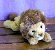 LION - BUCK
