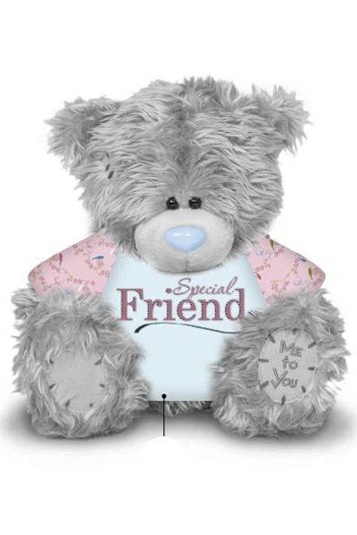 FRIEND - TATTY TEDDY
