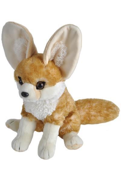 FOX - FENNEC