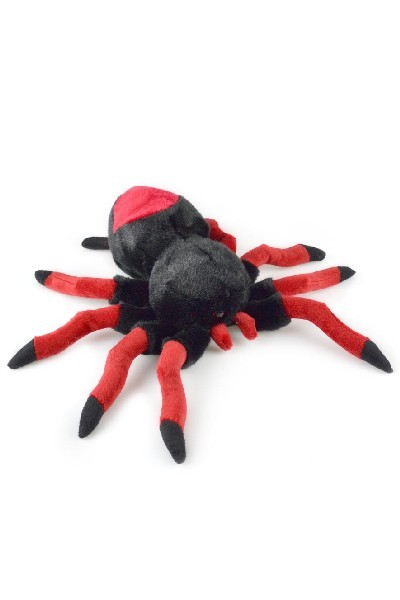 SPIDER - RED BACK