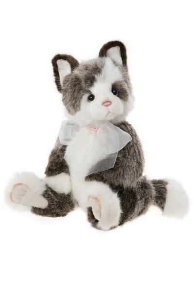 RODDERS CAT