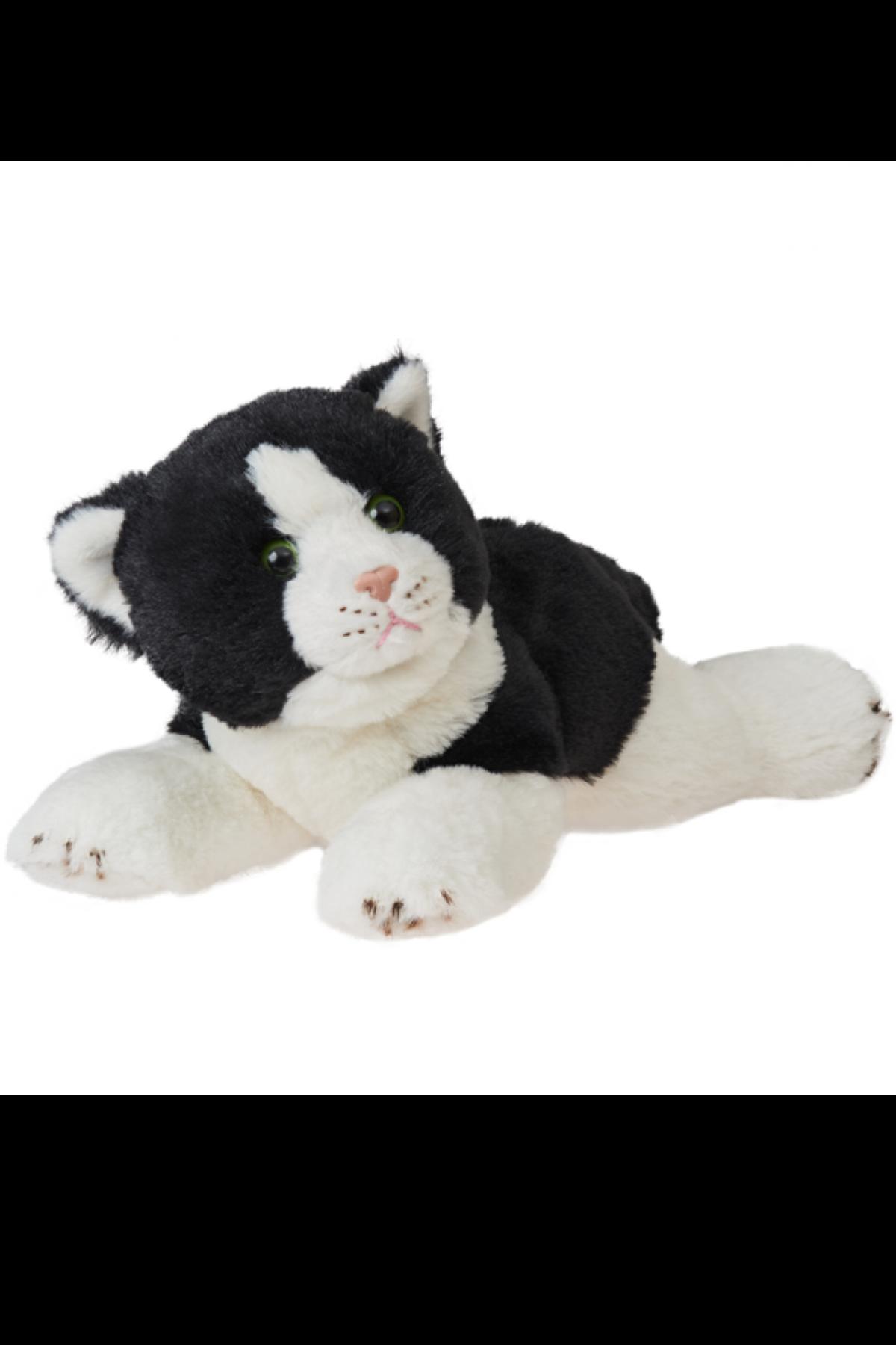 REX BLACK CAT