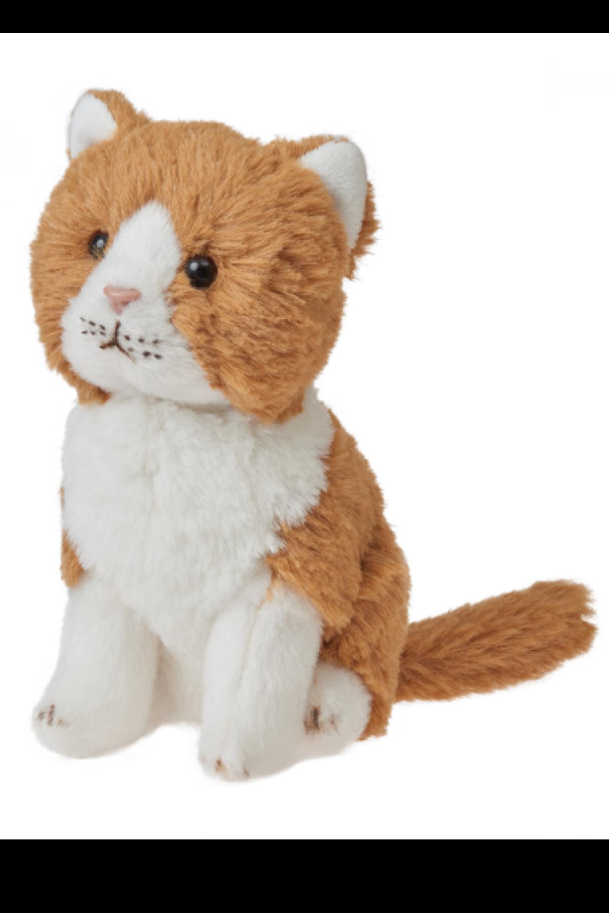 LEO GINGER CAT